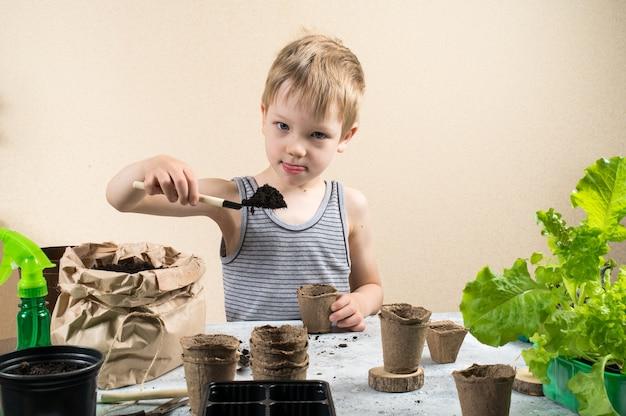 Ребенок сажает семена в торфяные горшки