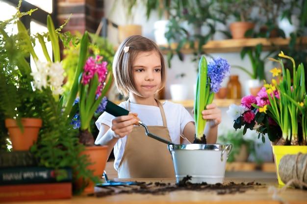 Child planting spring flowers. little girl gardener plants hyacinth. girl holding hyacinth in flower pot. child taking care of plants. gardening tools. copy space.