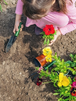 A child plants a flower garden. selective focus.