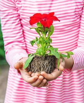 A child plants a flower garden