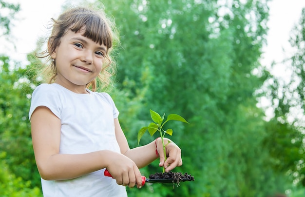 Child plants and watering plants in the garden