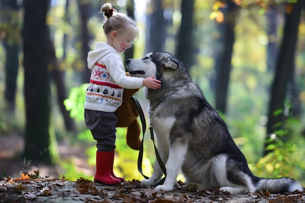 Детская игра с хаски на открытом воздухе. детство, игры и веселье. активность и активный отдых. маленькая девочка с собакой в лесу.