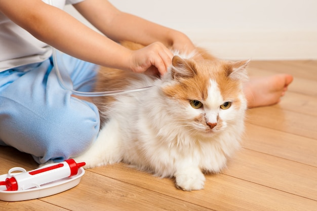 The child plays the doctor and tries to give an injection to the cat.