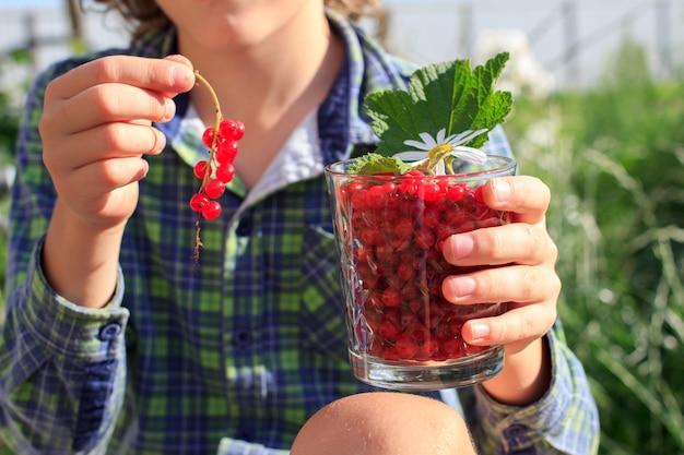 庭で屋外夏の赤スグリのガラスを持っている子供の手