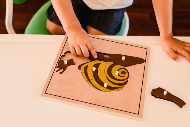 몬테소리 재료로 생물학을 배우는 어린이 손