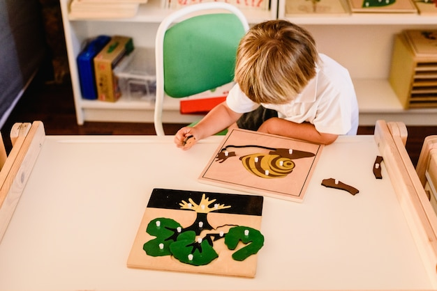 Child's hands learning biology with montessori material