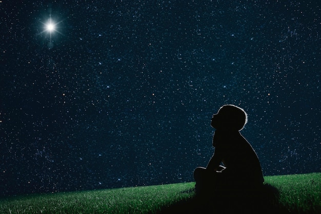 Child sit on the grass at night and look at the christmas night sky
