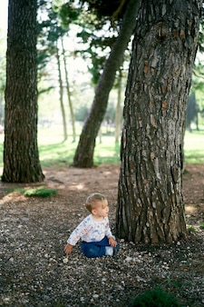 Child sits on the ground near a large tree in the park