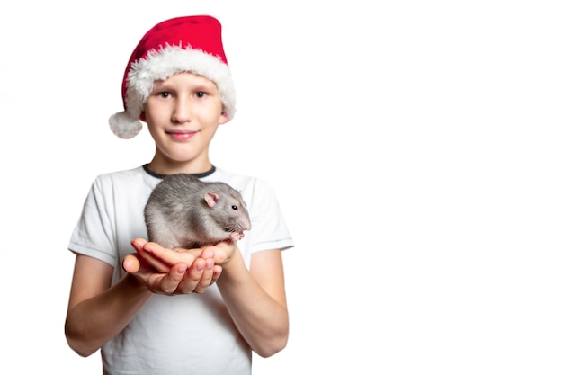 A child in a suit of santa claus holds a rat dumbo in his hands. white isolated background. the rat is a symbol of 2020. chinese new year.