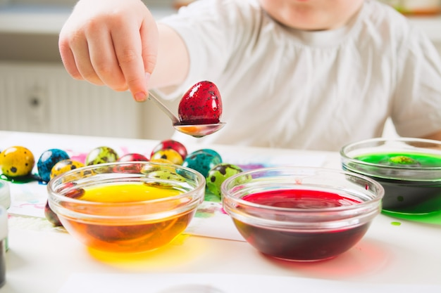 A child take red quail egg from paint