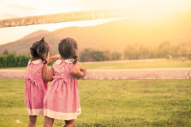 子供2人の少女は農場で動物を見て楽しんでいる