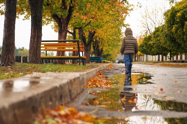 The child walks through the puddles along the embankment in the autumn. cloudy rainy weather
