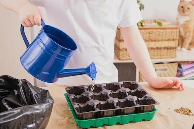 苗に水をまく子供、テーブルの上の苗の温室と園芸工具、春の植え付け
