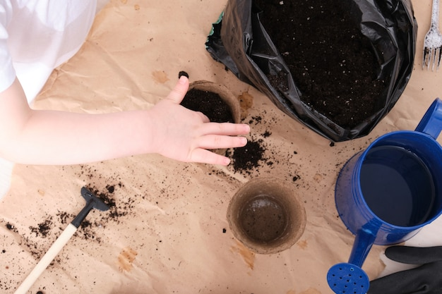 A child in a white t-shirt pours soil into a peat seed pot, a child plants a senen, garden tools on the table top view copy space