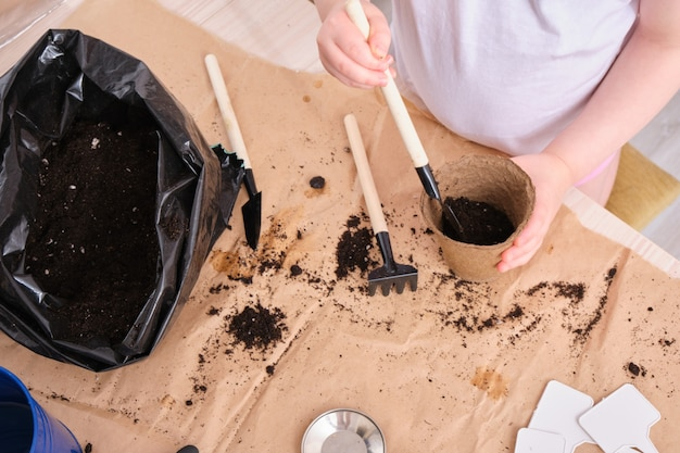 A child in a white t-shirt pours soil into a peat seed pot, a child plants a senen, garden tools on the table