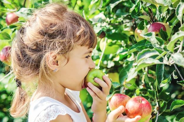サマーガーデンでリンゴを持つ子供。セレクティブフォーカス。人。