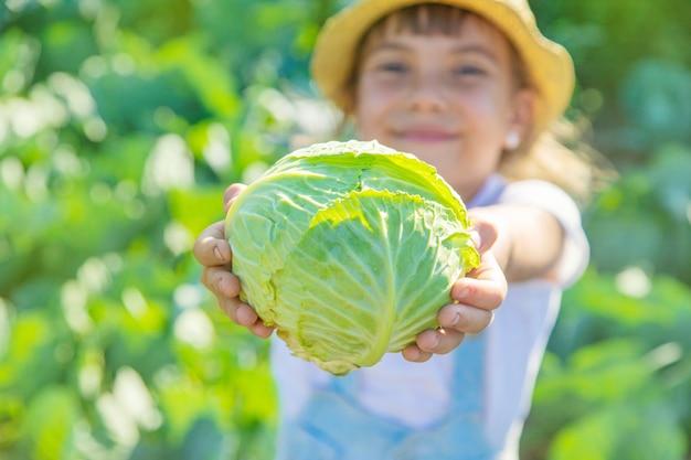 手にキャベツとブロッコリーを持つ子供。セレクティブフォーカス。