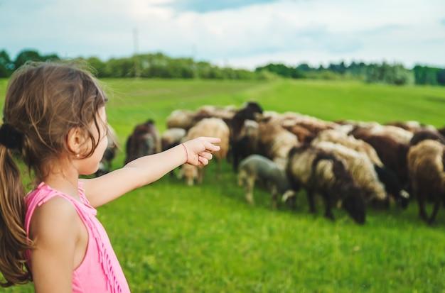 Ребенок с овцами и козами на лугу