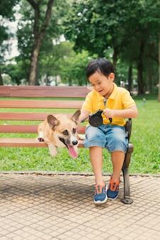 야외에서 어린이와 개. 그의 사랑스러운 pembroke 웨일스 어 corgi와 함께 공원에서 즐기는 아시아 어린 소년.