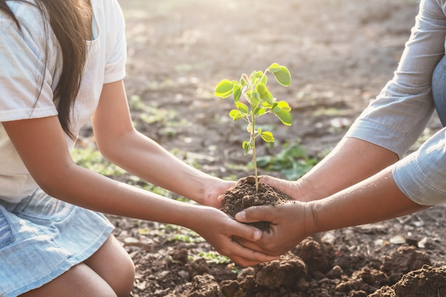 子供とお母さんが若い木を植えることを助けます。エココンセプト