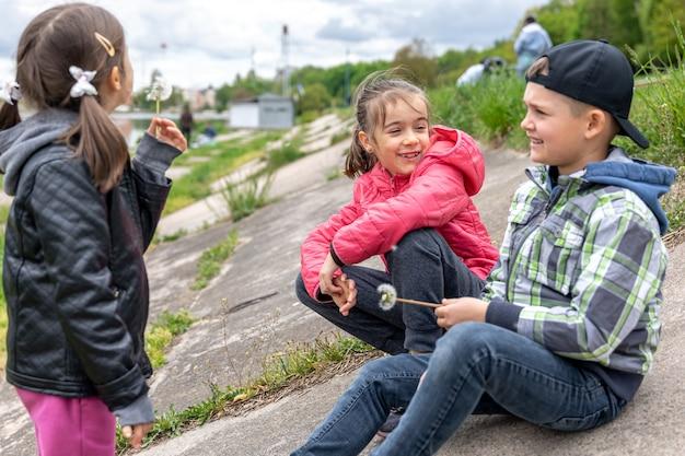 タンポポを手に自然の中で座っている子供たちが何かを話し合っている