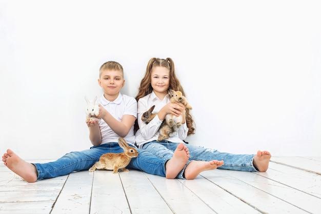 흰색 바탕에 아름다운 푹신한 작은 토끼 토끼와 행복한 어린이 소년과 소녀