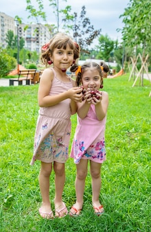 Children eat cherries in the summer