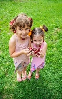 Children eat cherries in the summer.