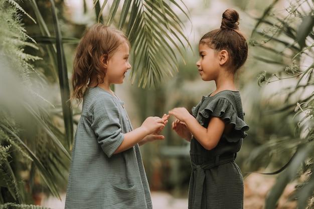 子供たちは温室で熱帯植物や花を探索します
