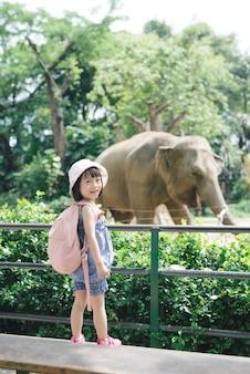 夏休みの間、熱帯のサファリパークでアジアゾウに餌をやる子どもたち。子供たちは動物を見る