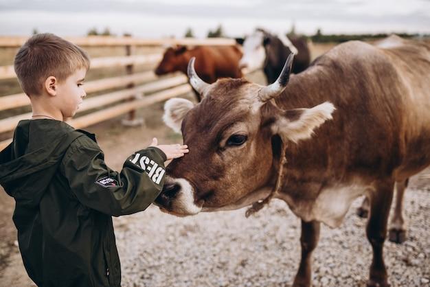 Дети кормят корову на ферме