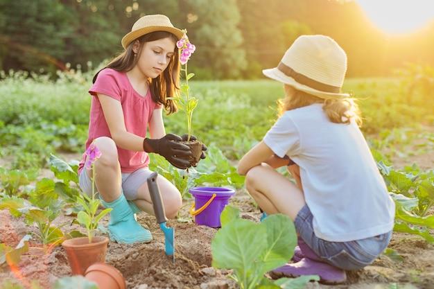 地面に植木鉢の植物を植える子供たちの女の子。庭のシャベル、背景春夏の田園風景、ゴールデンアワーと手袋をはめて小さな美しい庭師