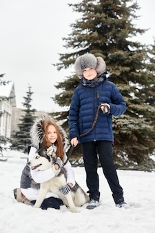 Children go out and play with husky dog in winter. children sit in the snow and stroked dog husky. walk