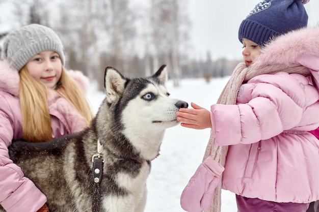 Children go out and play with husky dog in winter