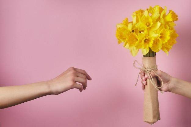 ピンクの背景に花を持っている子供たちの手。誕生日の黄色い水仙の花束。