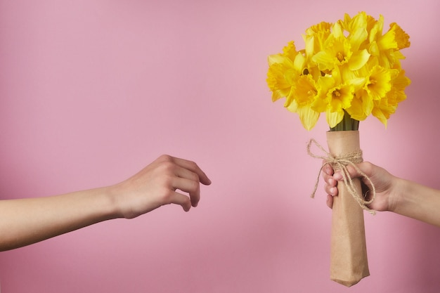 Children hand holding flowers on a pink background. bouquet of yellow narcissus for birthday.