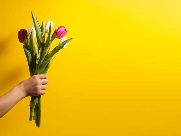Children hand holding flowers on yellow background. bouquet of white and pink tulips for birthday, happy mothers or valentines day and 8 march. stock photo