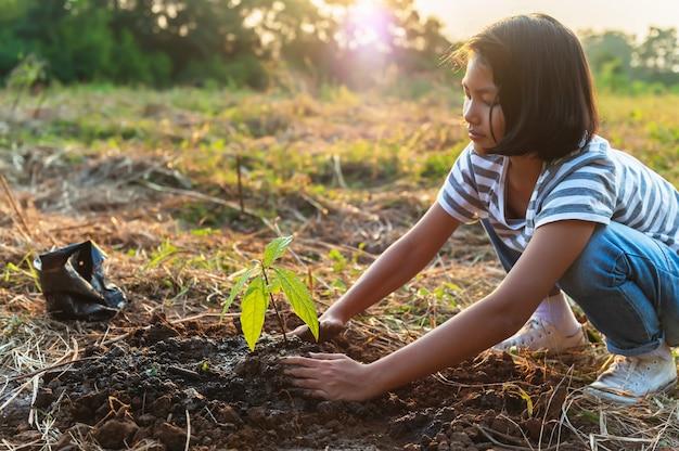 어린이 손 정원에 심기 위해 작은 나무를 잡고. 개념 녹색 세계