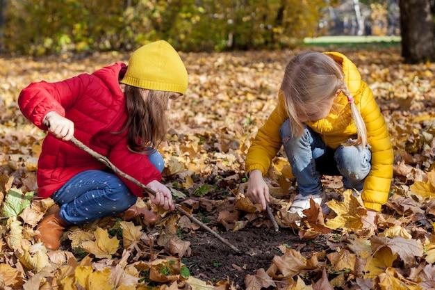 Дети в походе по лесу. две девушки изучают природу в лесу