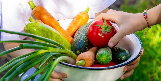 Дети в саду с овощами в руках. выборочный фокус. природа.