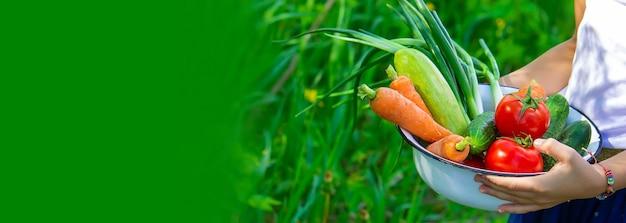 野菜を手にした庭の子供たち。セレクティブフォーカス。