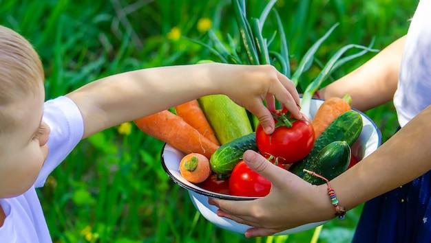 Дети в саду с овощами в руках. выборочный фокус.