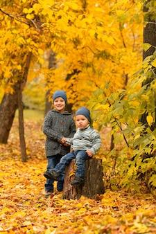 Дети в желто-золотом осеннем лесу