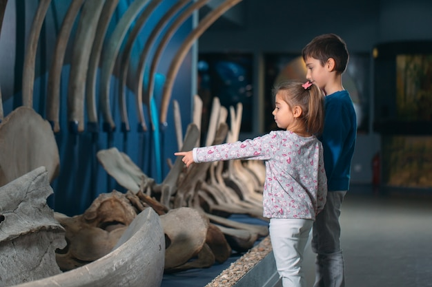 Children look at the skeleton of an ancient whale in the museum of paleontology