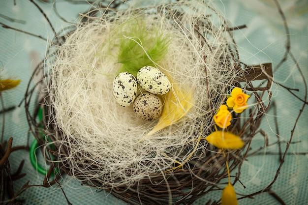 Children make a nest for birds, nest for birds