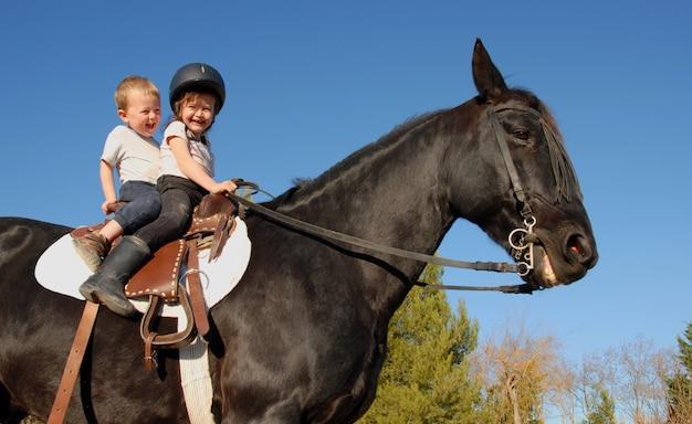 種馬の子供