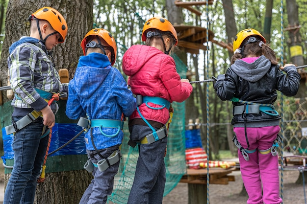 ロープに乗っている子供たちは登山スキルを身につけ、高所恐怖症を取り除きます。