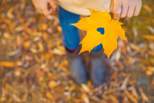 Children in the park with autumn leaves. selective focus.