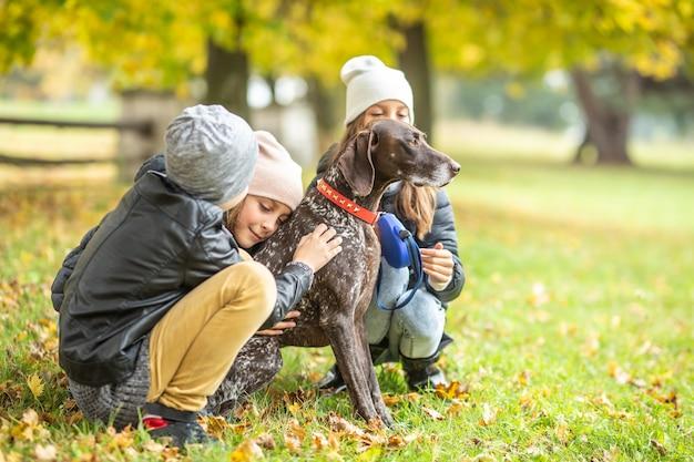 Дети гладят собаку на открытом воздухе во время осенней прогулки на природе.
