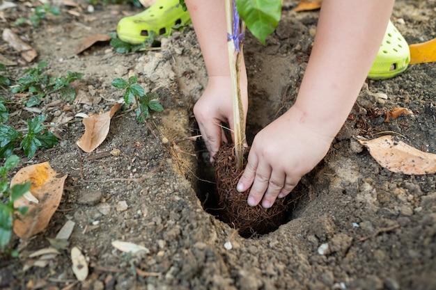 자연 배경으로 나무를 심는 아이들
